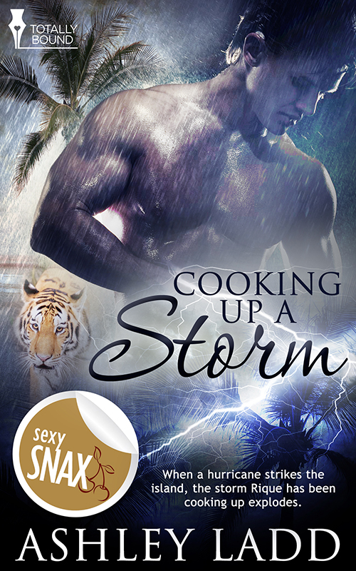 Cooking Up A Storm By Ashley Ladd New Mm Menage Ashleyladd Donna